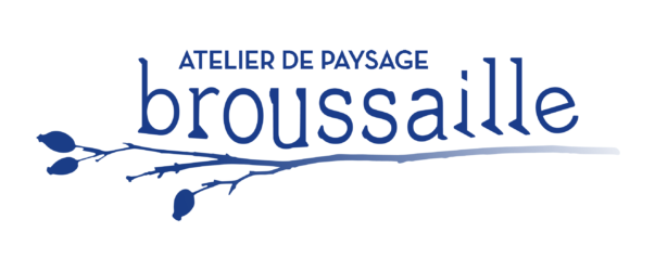 BROUSSAILLE